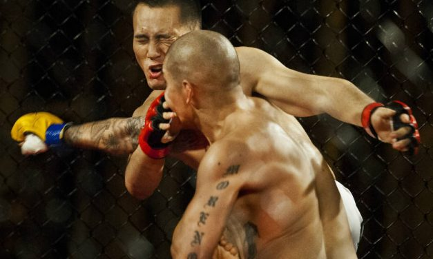 8 THINGS THAT REVEAL ALL ABOUT MIXED MARTIAL ARTS